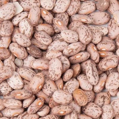Dried Pinto Beans - 20 lb.