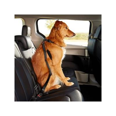 Dogit Car Safety Dog Belt; Sure, a pup trying to crawl on your lap while you\'re driving sounds cute, but let\'s face it: they\'re not very good at driving. Keep you and your pet safe and sound on your way to the park with the Dogit Car Safety Dog Belt....