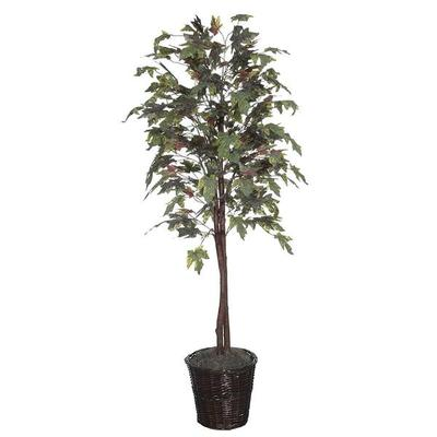 Vickerman 25215 - 6' Frosted Maple Tree (TEC1760) Maple H...