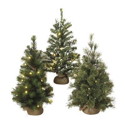 """GEIN Lighted 24"""" Green Artificial Christmas Tree with Sta..."""