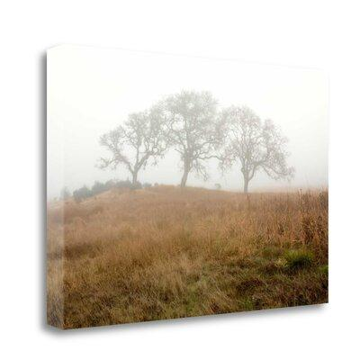 28 x 42 poster frame | Compare Prices at Nextag