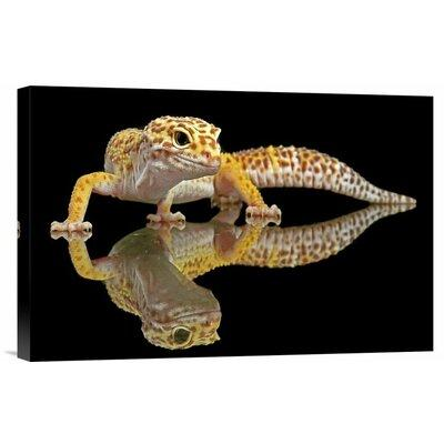 Global Gallery 'Leopard Gecko' by Dikky Oesin Photographi...