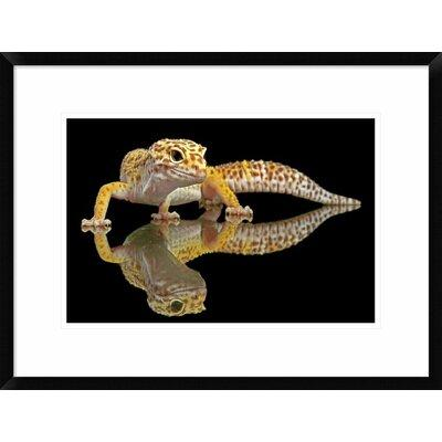 Global Gallery 'Leopard Gecko' by Dikky Oesin Framed Grap...
