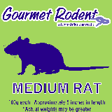Frozen Medium Rat - 10 Count, 10 CT