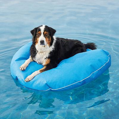 """Dog Pool Float and Lounger - Tangerine , Medium: 39"""" dia. - Frontgate"""