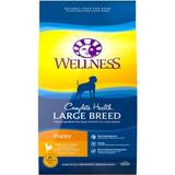 Wellness Large Breed Complete Health Puppy Chicken, Rice & Salmon Meal Dry Dog Food, 30-lb