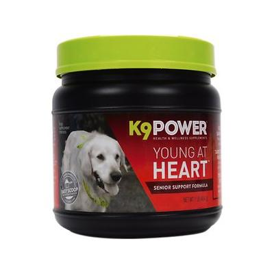 K9 POWER Young At Heart Nutritional Senior Dog Supplement, 1-lb jar
