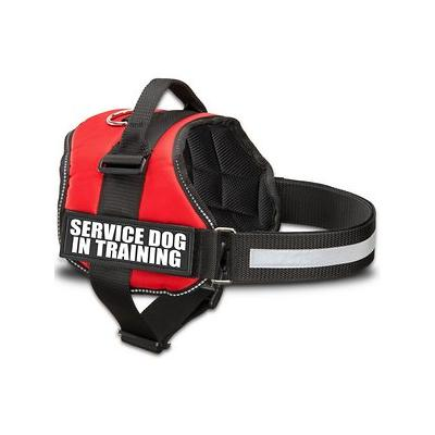 Industrial Puppy Service Dog in Training Dog Harness, Red, XX-Small